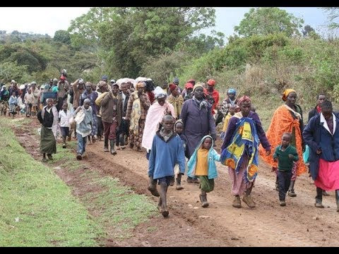 Human Rights Watch Lambastes Kenya's Mau Forest Evictions