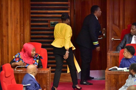Tanzanian Female MP Ejected From Parliament For Wearing Sexy Pants