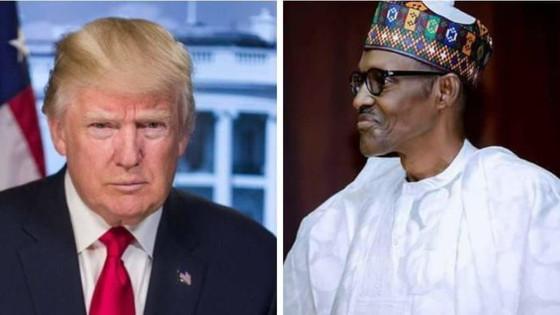 Buhari To Meet Trump In White House