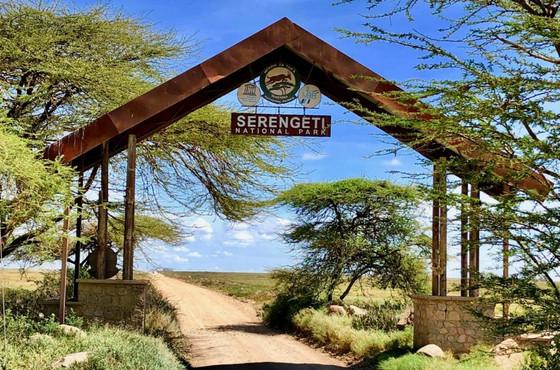 Serengeti Crowned World's Best National Park 2021