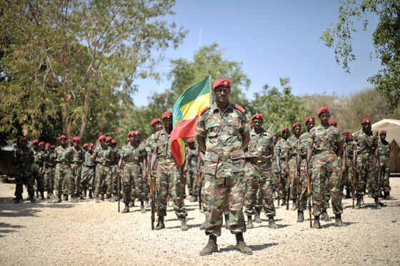 Ethiopia Federal Troops Take Control Of Mekele. End Of Tigray Conflict?