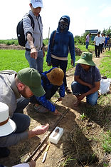 The Salt Doctors - saline agriculture, training and research in the field