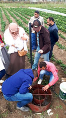 The Salt Doctors - Saline Agriculture, training and research