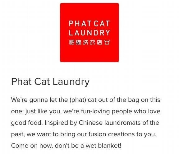 Phat Cat Laundry_edited