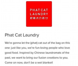 Phat Cat Laundry_edited