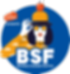 Logo BSF - Bleu BG.PNG
