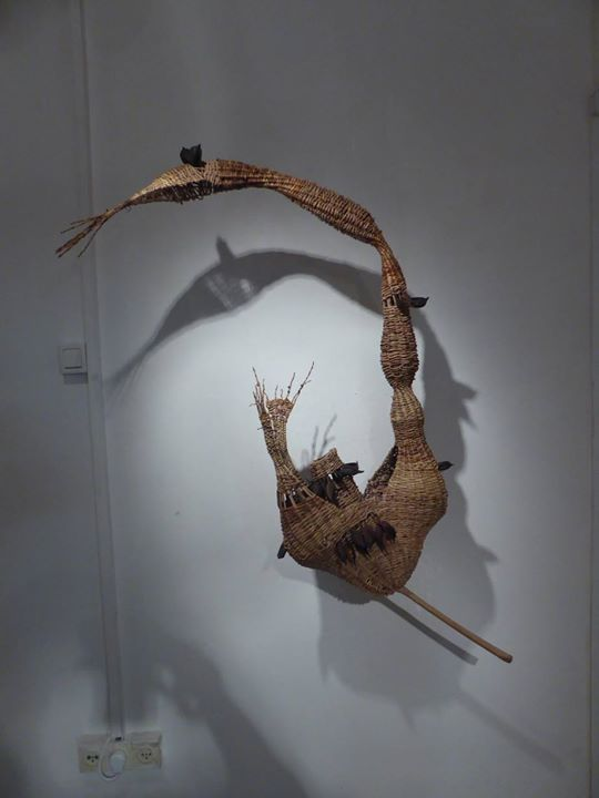Bird of the palm-tree