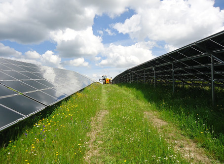Coordenação de Segurança em Obra na construção de uma Central Solar Fotovoltaica, em Estremoz, Évora