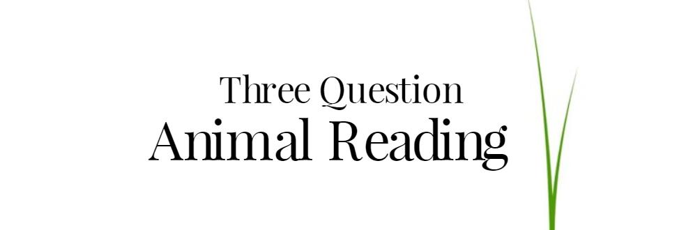 Üç Soru Hayvan Psişik Okuma