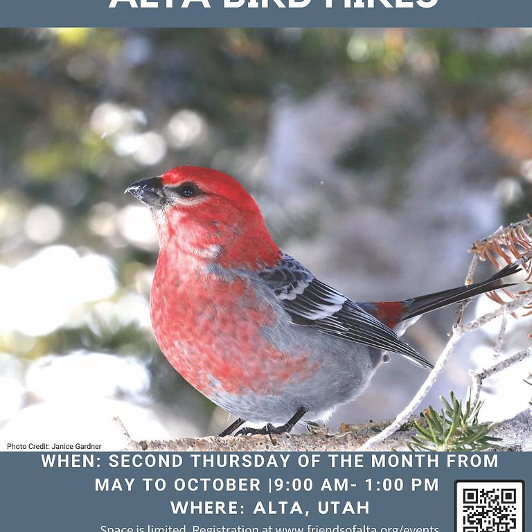 Alta Bird Hike with Tracy Aviary