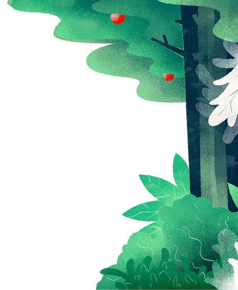 Fondo Del Bosque Ilustrado