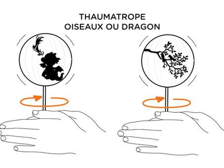 Une expérience optique pour apprendre en s'amusant... un thaumatrope à fabriquer!