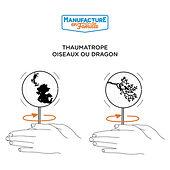 Thaumatrope_carré_LD.jpg