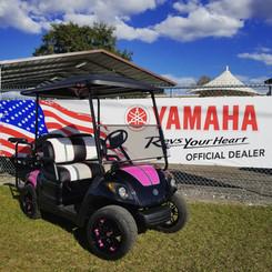 Your Local Yamaha Dealer!