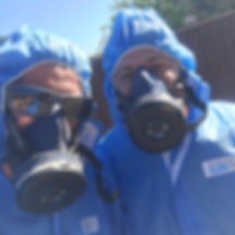 ASBESTOS REMOVAL PROFESSIONALS