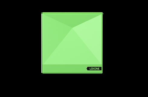 Miniserver GO.png
