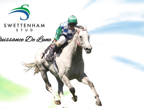 IT'S ALL QUALITY FROM PUISSANCE DE LUNE