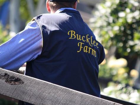 Swettenham Breeder Profile - Bucklee Farm