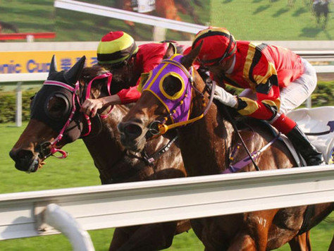 Diviner making a splash at Sha Tin