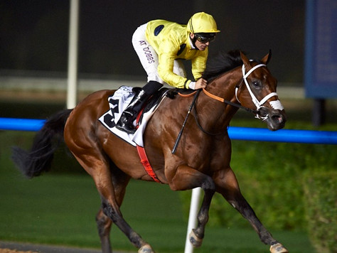Rising star by Equiano in Emirates