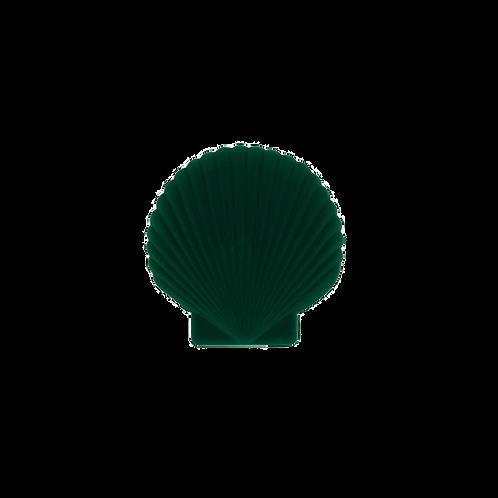 SHELL JEWELRY BOX GREEN