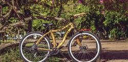 bike de bamboo mamuta para capa site artbikebamboo_edited_edited