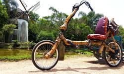 recumbent bike da ana bamboo bike bambu.