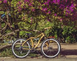 Bamboo bike, hand made with bamboo, Bambu bike da ArtBikeBamboo personalizada