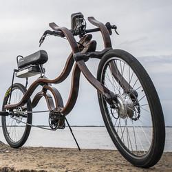 e bike electric bike woodbike wood ebike