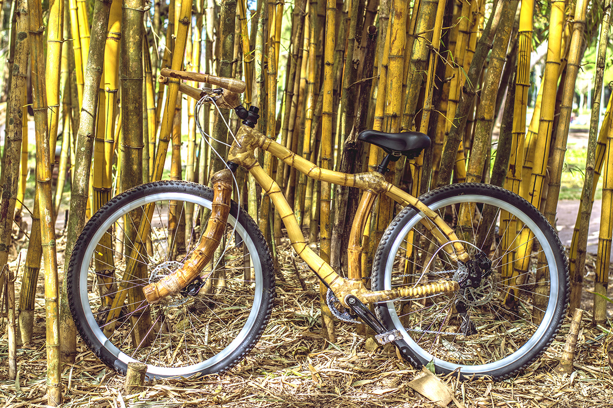 Bamboo bike, hand made with bamboo, Bambu bike da ArtBikeBamboo personalized