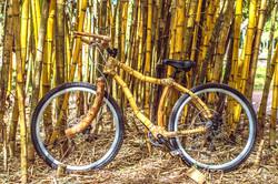 Bamboo bike, hand made with bamboo, Bambu bike da ArtBikeBamboo personalized