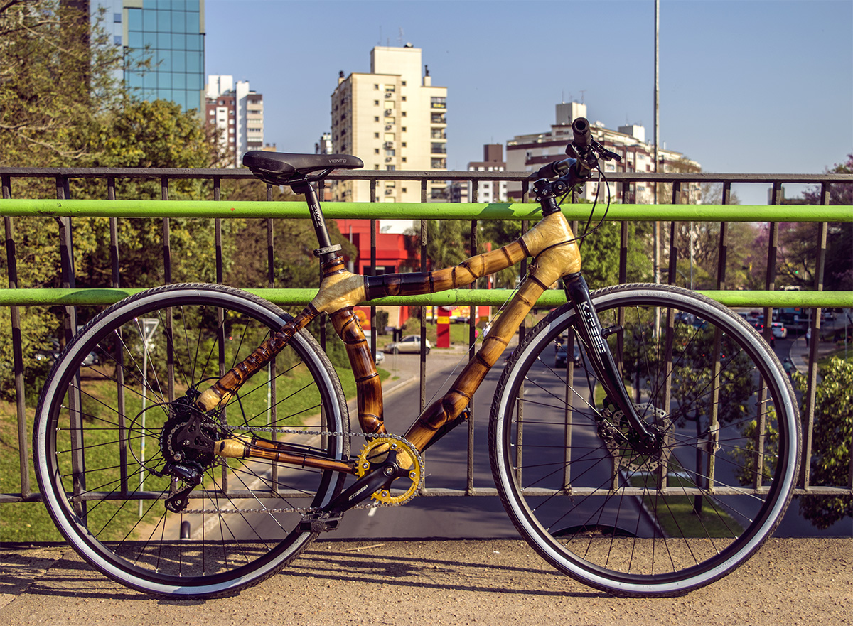 Bamboo bike by ArtBikeBamboo