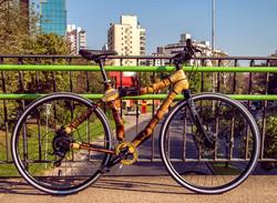 Bamboo bike by ArtBikeBamboo