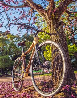 Bamboo bike hand mande by ArtBikeBamboo