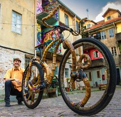1. bamboo bike artdesign