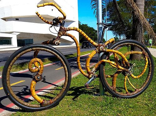 Curso de construção de Bicicletas de Bambu: 29 julho a 6 agosto 2018