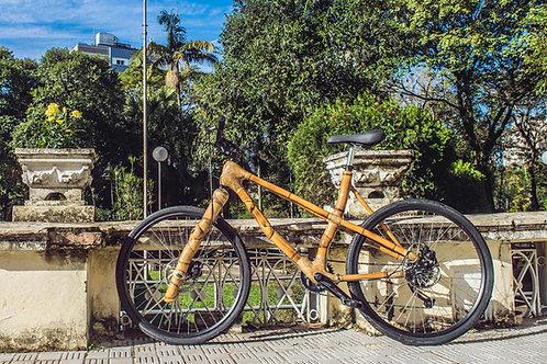 Bicicleta Leveza, completa