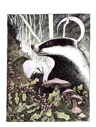 Badger - Art Print