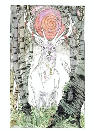 White Stag - Art Print