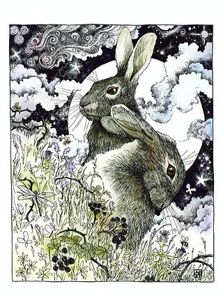 Hares - Art Print
