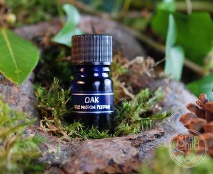 Oak Tree Wisdom Oil