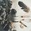 Thumbnail: Mellonia Cleansing Balm