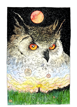 Eagle Owl - Art Print