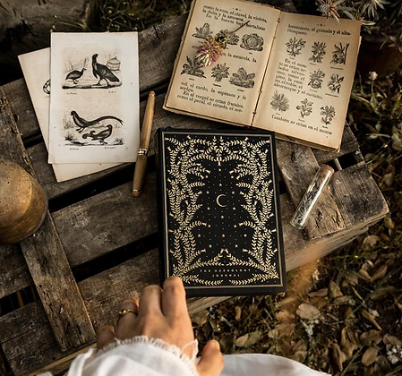 Herbology Journal by CoCorrina