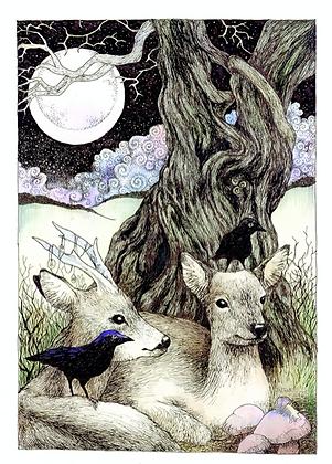 Deer - Art Print