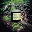 Thumbnail: The Healer Balm by Stag + Seer