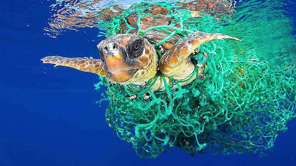 ALGORITMI DI ALESSANDRO FEROLDI, oceani di plastica