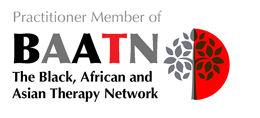 BAANT Practitioner-Member-logo.jpg