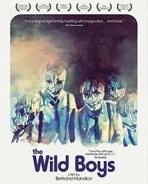 Wild Boys Alt BD Art.jpg