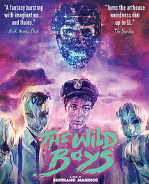The Wild Boys Blu-ray Front Cover.jpg